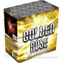 Golden Rose Batterie - Nico